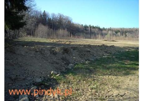 Działka na sprzedaż - Szklarska Poręba, Jeleniogórski, 1383 m², 346 000 PLN, NET-PIN19903