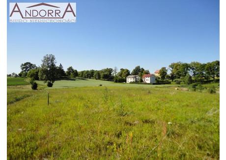 Działka na sprzedaż - Załęże, Przodkowo, 3212 m², 176 660 PLN, NET-NA0869