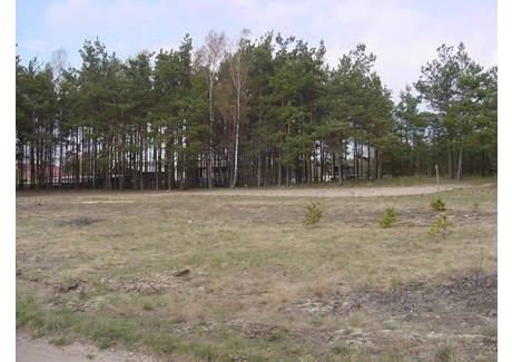 Działka na sprzedaż - TUCHOLSKA Mieszkaniowa, Czersk, 15 939 m², 1 115 730 PLN, NET-IB01646