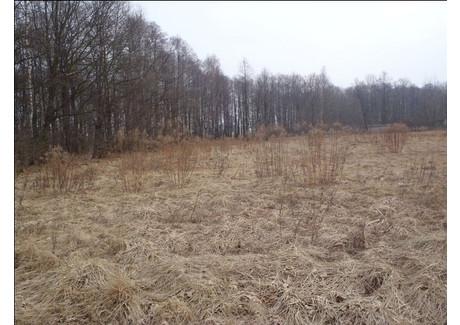 Działka na sprzedaż - Bodzów, 1258 m², 86 800 PLN, NET-13452/00401S/2013