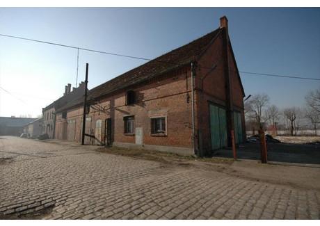 Dom na sprzedaż - Skorogoszcz, Lewin Brzeski, Brzeski, 300 m², 220 000 PLN, NET-1335