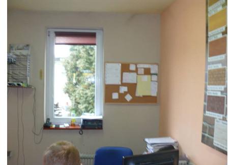 Magazyn do wynajęcia - Boguchwała, Rzeszowski, 300 m², 3200 PLN, NET-14220620