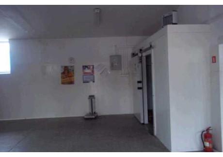 Magazyn do wynajęcia - Rzeszów, 205 m², 3000 PLN, NET-26880620