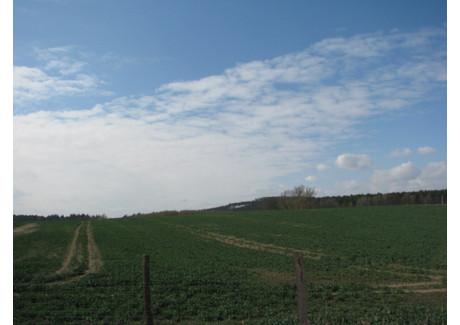 Działka na sprzedaż - Chojna, Gryfiński, 39 800 m², 210 000 PLN, NET-105