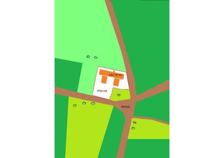 Magazyn, hala na sprzedaż - Nowogard, Goleniowski, 1057,48 m², 515 000 PLN, NET-RN000194