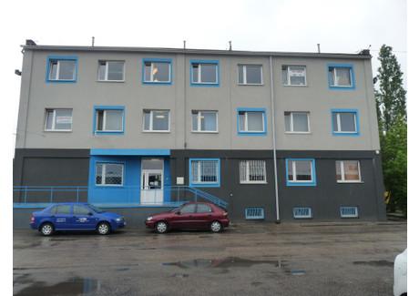Magazyn do wynajęcia - Ptasia Pogoń, Sosnowiec, 129 m², 774 PLN, NET-1071