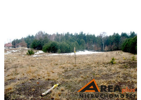 Działka na sprzedaż - Krzyżówki, Lipno, Lipnowski, 11 800 m², 65 000 PLN, NET-RDW-GS-91456