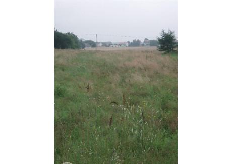 Działka na sprzedaż - Strawczyn, Kielecki, 9431 m², 650 000 PLN, NET-2011702