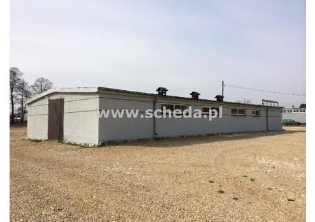Magazyn do wynajęcia - Gnaszyn Dolny, Częstochowa, Częstochowa M., 350 m², 3500 PLN, NET-SCH-HW-2717