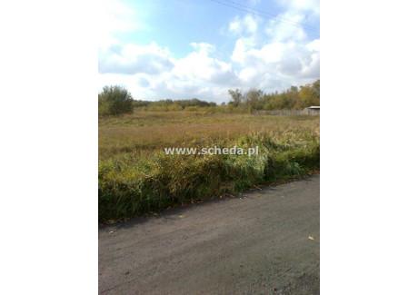 Działka na sprzedaż - Chorzenice, Sulmierzyce, Pajęczański, 4000 m², 120 000 PLN, NET-SCH-GS-2611