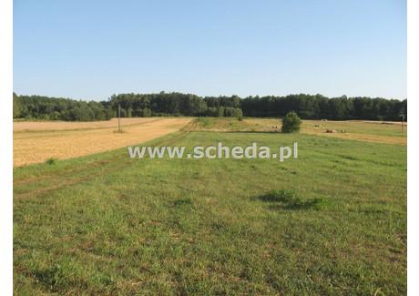 Działka na sprzedaż - Jaskrów, Mstów, Częstochowski, 11 100 m², 100 000 PLN, NET-SCH-GS-2668
