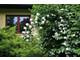 Dom na sprzedaż - Malin Wisznia Mała (Gm.), Trzebnicki (Pow.), 220 m², 920 000 PLN, NET-72