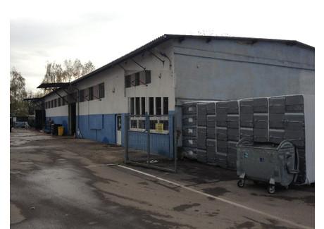 Handlowo-usługowy do wynajęcia - Opole, 3000 m², 7830 PLN, NET-332