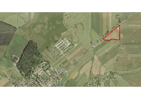Działka na sprzedaż - Sidzina, Łambinowice, Nyski, 24 600 m², 400 000 PLN, NET-65