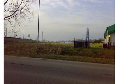 Działka na sprzedaż - Kłodzko, Kłodzki, 9246 m², 1 200 000 PLN, NET-5