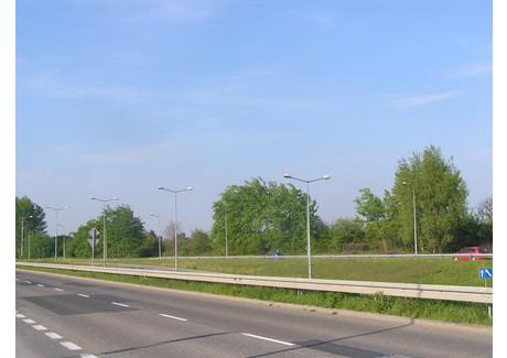 Działka na sprzedaż - Radom, 3500 m², 700 000 PLN, NET-20/313/ODzS