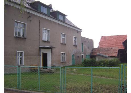 Dom na sprzedaż - Koźle, Kędzierzyn-Koźle, Kędzierzyńsko-Kozielski, 350 m², 450 000 PLN, NET-ZUR-DS-1162