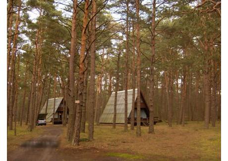Działka na sprzedaż - Pobierowo, Rewal, Gryficki, 13 512 m², 10 800 000 PLN, NET-ZUR-GS-1674