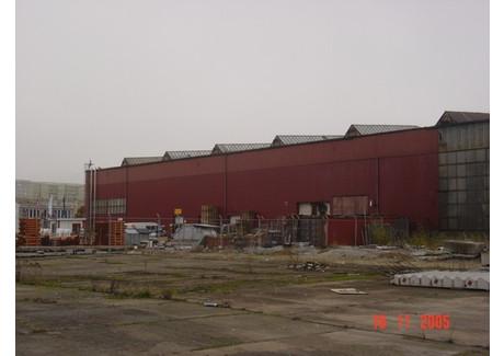 Komercyjne na sprzedaż - Szczecin, 4400 m², 9 500 000 PLN, NET-SCNS1489