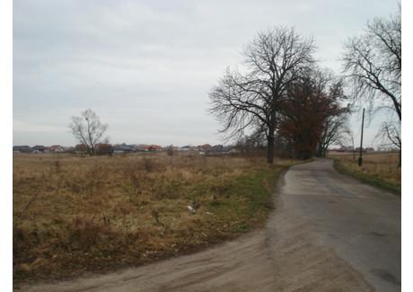 Działka na sprzedaż - Kościno, Dobra (szczecińska), Policki, 3077 m², 230 775 PLN, NET-SCN20913