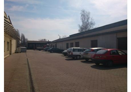 Komercyjne na sprzedaż - Szczecin, 3200 m², 5 900 000 PLN, NET-SCN20501