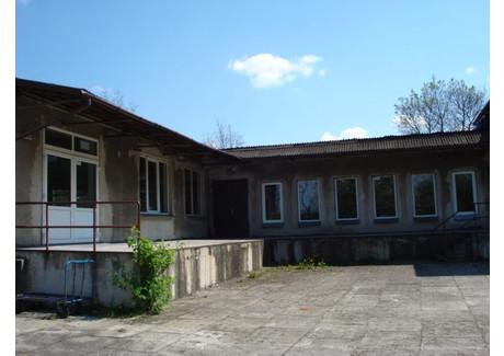 Komercyjne na sprzedaż - Goleniów, Goleniowski, 850 m², 1 200 000 PLN, NET-SCNS1198