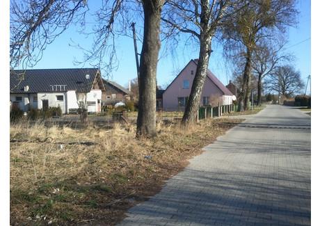 Działka na sprzedaż - Warnołęka, Nowe Warpno, Policki, 2400 m², 250 000 PLN, NET-SCN20108