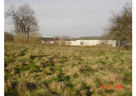 Działka na sprzedaż - Redlica, Dobra (szczecińska), Policki, 8192 m², 1 720 320 PLN, NET-SCNS1146