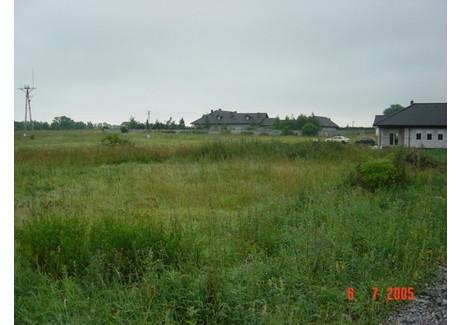 Działka na sprzedaż - Mierzyn, Dobra (szczecińska), Policki, 9684 m², 1 400 000 PLN, NET-SCN00562