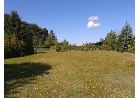 Działka na sprzedaż - Oświno, Chociwel, Stargardzki, 3000 m², 149 000 PLN, NET-SCN21003