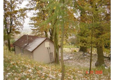 Działka na sprzedaż - Radziszewo, Gryfino, Gryfiński, 6336 m², 1 330 000 PLN, NET-SCNS1736