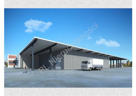 Działka na sprzedaż - Pruszków, Pruszkowski, 10 000 m², 6 500 000 PLN, NET-G-81896-5