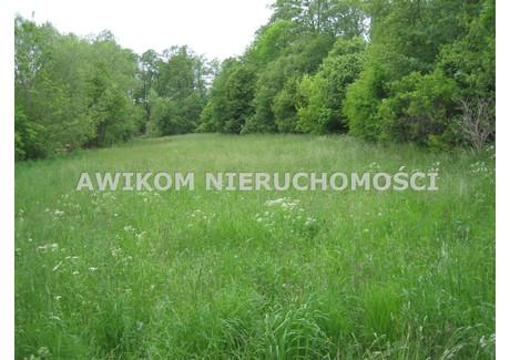 Działka na sprzedaż - Jaktorów, Budy Zosine, Jaktorów, Grodziski, 10 500 m², 200 000 PLN, NET-AKM-GS-53356-1