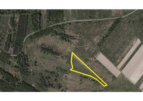 Działka na sprzedaż - Turbia, Zaleszany, Stalowowlski, 1843 m², 20 000 PLN, NET-39/INH/OGS-236