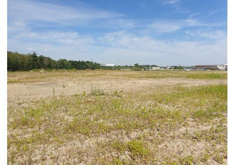 Działka na sprzedaż - Poznań, 240 000 m², 48 000 000 PLN, NET-199