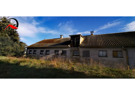 Magazyn na sprzedaż - Żędowo, Szubin, Nakielski, 1000 m², 500 000 PLN, NET-693385