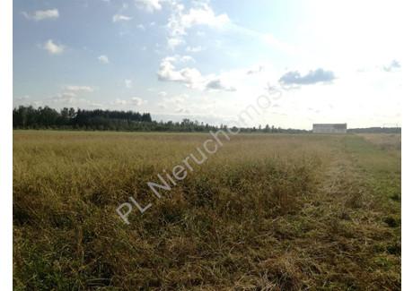 Działka na sprzedaż - Krze Duże, Żyrardowski, 40 600 m², 3 999 912 PLN, NET-G-49770-0