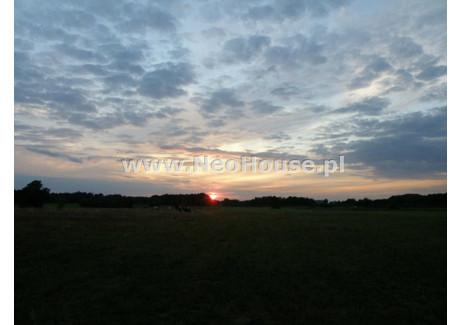 Działka na sprzedaż - Adamowo, Pozga, Bieżuń, Żuromiński, 10 100 m², 100 000 PLN, NET-GS-63705-1