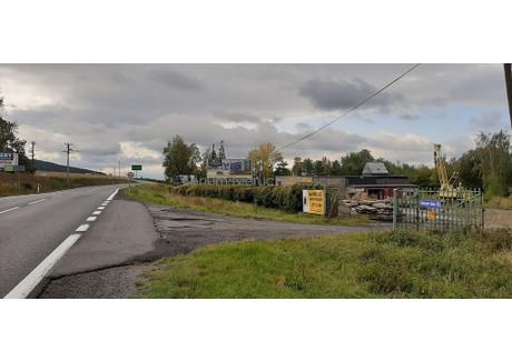 Magazyn na sprzedaż - Szklary-Huta, Ząbkowice Śląskie, Ząbkowicki, 9028 m², 800 000 PLN, NET-2/8514/OOS