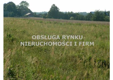 Działka na sprzedaż - Kamionka, Lubartowski, 4211 m², 99 000 PLN, NET-OBG-GS-908