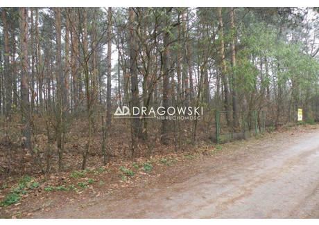 Działka na sprzedaż - Ruda, Radzymin, Wołomiński, 3107 m², 310 000 PLN, NET-1046/4790/OGS