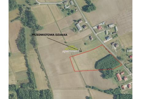 Działka na sprzedaż - Radgoszcz, Dąbrowski, 16 900 m², 202 800 PLN, NET-AP2-GS-10008