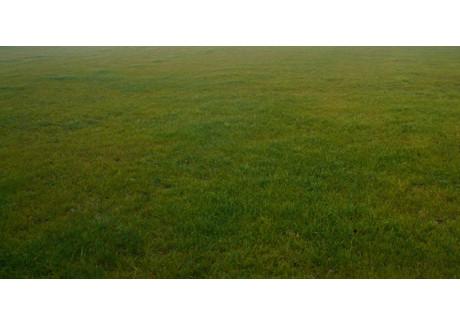 Działka na sprzedaż - Słomczyn, Konstancin-Jeziorna, Piaseczyński, 1500 m², 240 000 PLN, NET-17161