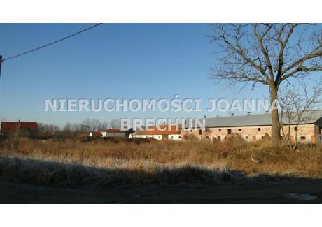 Działka na sprzedaż - DZIAŁKA Z ZABUDOWANIAMI Kryniczno, Środa Śląska, Średzki, 3000 m², 300 000 PLN, NET-NJB-GS-25588-2