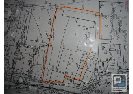 Handlowo-usługowy na sprzedaż - Okolice Jeleniej Góry I Karpacza, Jeleniogórski, 6200 m², 1 200 000 PLN, NET-JGJP-1857
