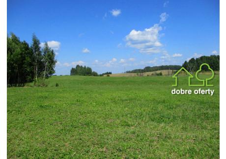 Działka na sprzedaż - Kozaki, Gołdap (gm.), Gołdapski (pow.), 9000 m², 180 000 PLN, NET-GS-56a