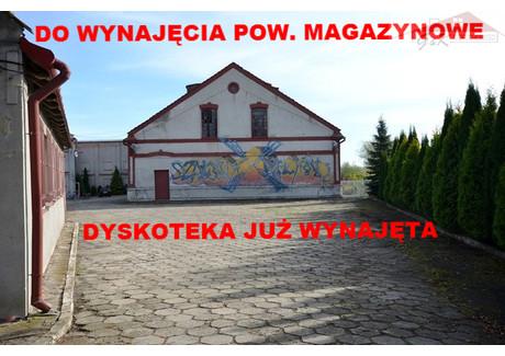 Obiekt do wynajęcia - Młynarska Przemyśl, 385 m², 3800 PLN, NET-67/2609/OOW