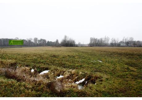 Działka na sprzedaż - Brzeziny Halinów, Miński, 36 300 m², 3 630 000 PLN, NET-88