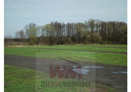 Działka na sprzedaż - Grójec, Grójecki, 10 000 m², 650 000 PLN, NET-47/454/OGS