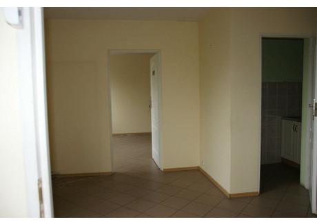 Komercyjne do wynajęcia - Żory, Żory M., 250 m², 3300 PLN, NET-GRJ-LW-74